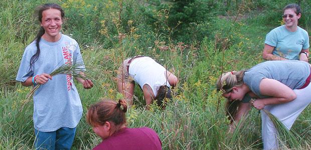 Picking Sweetgrass