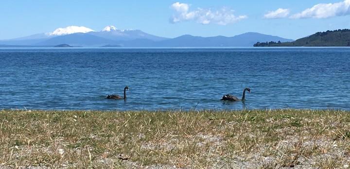 Taupo-sjön, Nya Zeeland