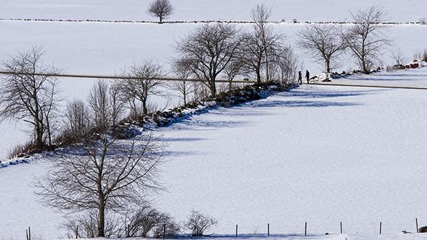 Falbygden i vinterskrud