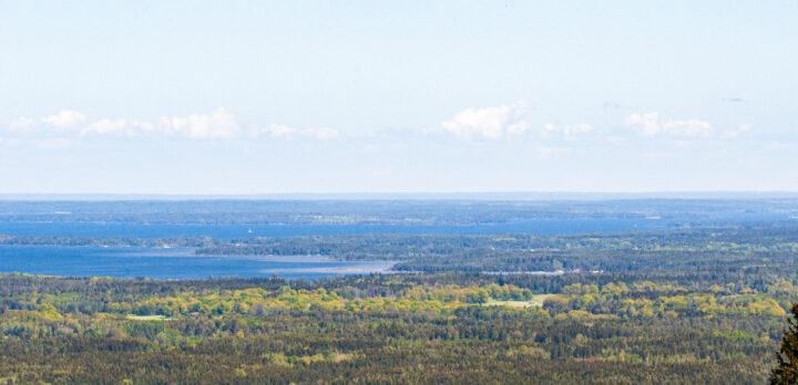 Flygbild över skog och sjö. Foto.